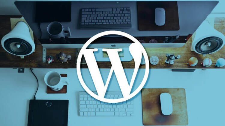11 Reasons Why You Should Choose WordPress For Your Website